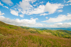 Grassland and mountains of Thailand Stock Photography