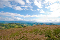 Grassland and mountains of Thailand. Going to Doi Chang, I found this nice view Royalty Free Stock Photos
