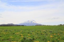 Grassland  and Mt.  Iwate Stock Image
