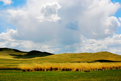 Grassland in Nailin Guole Stock Images