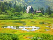 Grassland, Nature, Nature Reserve, Vegetation stock photos