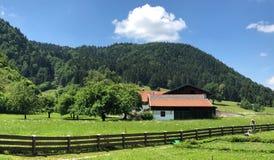 Grassland, Nature, Pasture, Mountainous Landforms stock photo