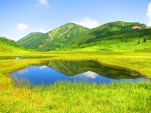 Grassland, Nature, Vegetation, Nature Reserve stock photos