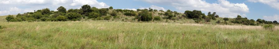 Grassland panorama, South Africa. Royalty Free Stock Photos