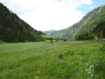 Grassland, Pasture, Nature Reserve, Ecosystem royalty free stock photo