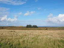 Grassland, Prairie, Ecosystem, Plain stock photos