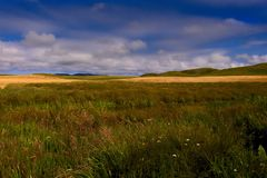 Grassland, Prairie, Ecosystem, Sky stock image