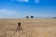 Grassland, Prairie, Ecosystem, Sky stock photos