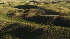Grassland, a prairie, a pampas, a pasture, Northern Australia royalty free stock image