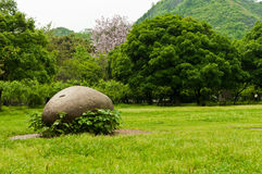 Grassland with rock Royalty Free Stock Image
