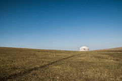 Grassland Royalty Free Stock Photos