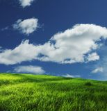 Grassland and sky Royalty Free Stock Image