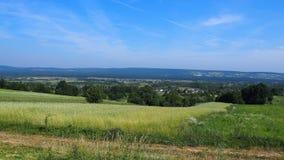 Grassland, Sky, Ecosystem, Field stock photos
