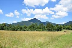 Grassland, Sky, Ecosystem, Mountainous Landforms