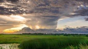 Grassland, Sky, Ecosystem, Prairie royalty free stock image