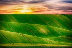 Grassland, Sky, Field, Ecosystem royalty free stock images