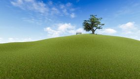 Grassland, Sky, Field, Ecosystem stock images