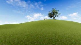 Grassland, Sky, Field, Ecosystem stock photos