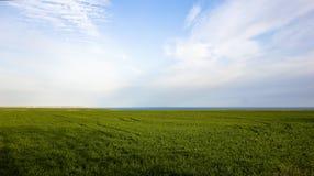 Grassland, Sky, Field, Ecosystem stock photo