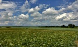 Grassland, Sky, Field, Ecosystem royalty free stock photo