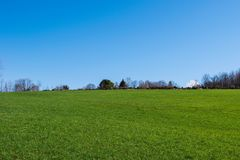 Grassland, Sky, Field, Meadow Stock Photo