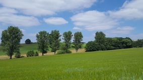 Grassland, Sky, Field, Pasture stock photo