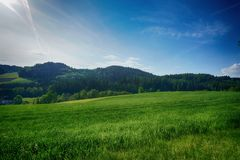 Grassland, Sky, Nature, Green stock photo
