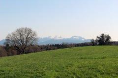 Grassland, Sky, Pasture, Field stock image
