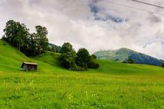 Grassland, Sky, Pasture, Nature royalty free stock image