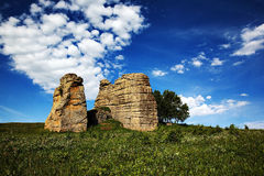 Grassland stone forest Royalty Free Stock Photo