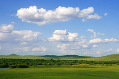 Grassland Summer stock photography