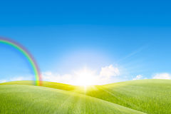 Grassland in the sunny day and rainbow Royalty Free Stock Photos