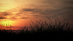 Grassland Sunset Royalty Free Stock Photography
