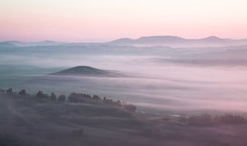 Grassland in thick fog Stock Photos