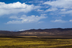 Grassland in tibet Royalty Free Stock Photography