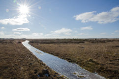 Grassland trail with ice Royalty Free Stock Photography