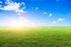 Grassland under the blue sky Stock Photos