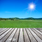 Grassland under the blue sky Royalty Free Stock Photo