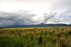 Grassland under the clouds. Here is the Chinese Qinghai Province MenYuan County Royalty Free Stock Photography