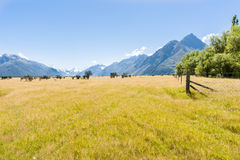 Grassland valley and Southern Alps, New Zealand. Stock Images