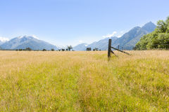 Grassland valley and Southern Alps, New Zealand. Royalty Free Stock Image