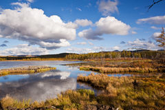Grassland and wetland Stock Photo