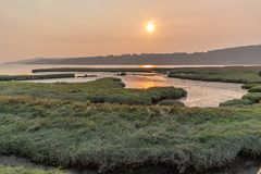 Grassland wetland along the sound stock photos