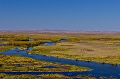 Grassland and wetland Stock Images