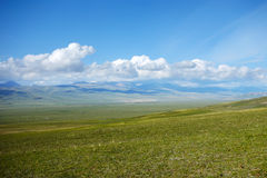 Grassland with white clouds Stock Image