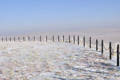 Grassland in winter Stock Image