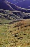 Grasslands Royalty Free Stock Images