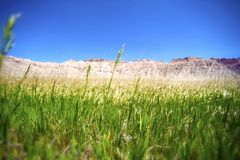 The Grasslands. Badlands and Prairies. Badlands Grasslands and Clear Blue Sky. Nature Photo Collection Stock Image