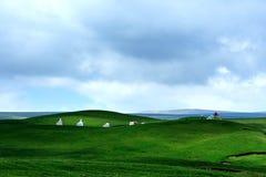grasslands Imagens de Stock Royalty Free