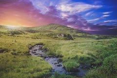 Grasslands  Royalty Free Stock Image